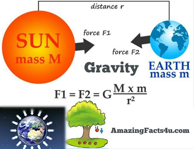 Gravity Amazing Facts
