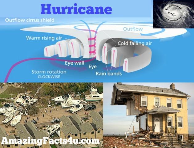 Hurricane Amazing facts