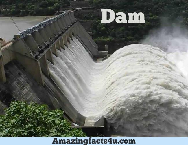 Dam Amazing facts