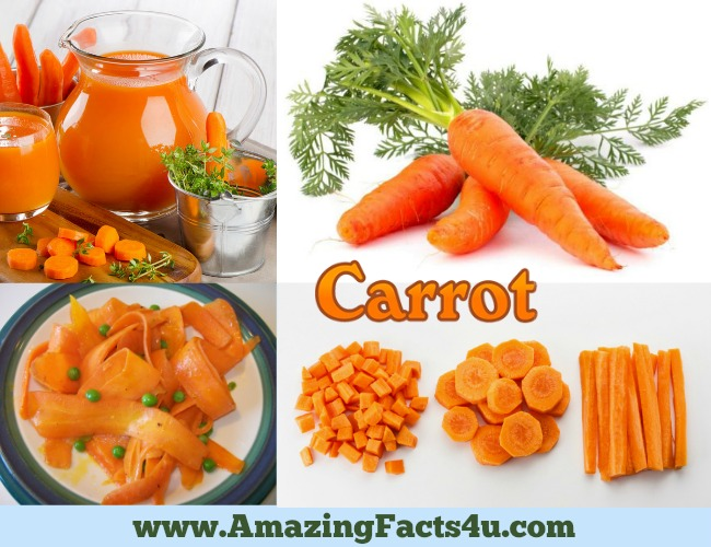 amazing-facts-carrot