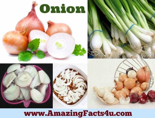 Amazing Facts Onion
